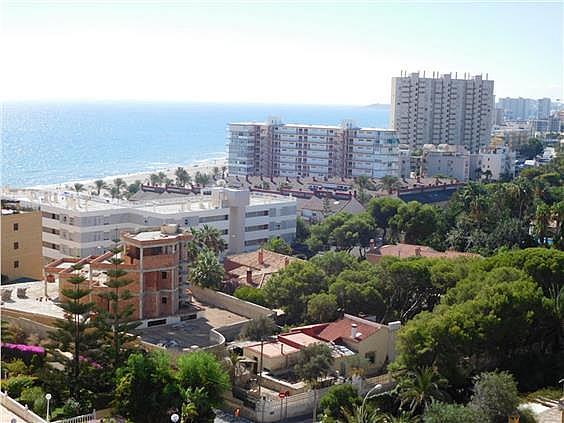 Piso en alquiler en calle Magraner, Playa Mucha Vista en Campello (el) - 328144287