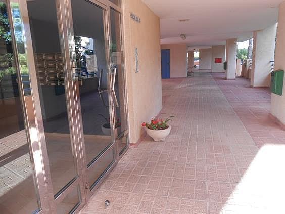 Piso en alquiler en calle Magraner, Playa Mucha Vista en Campello (el) - 328144356