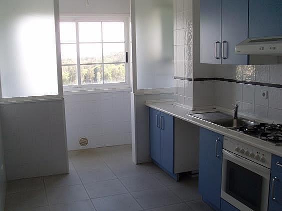 Piso en alquiler en Palavea-Mesoiro-Feans en Coruña (A) - 322118036