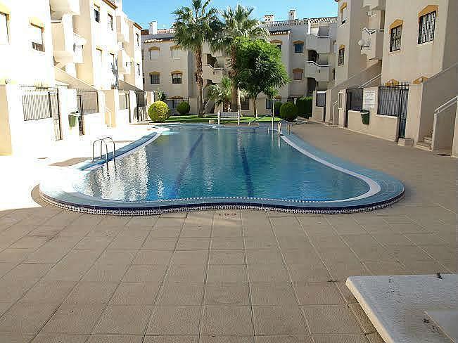 Foto1 - Apartamento en alquiler en Torrevieja - 322098977