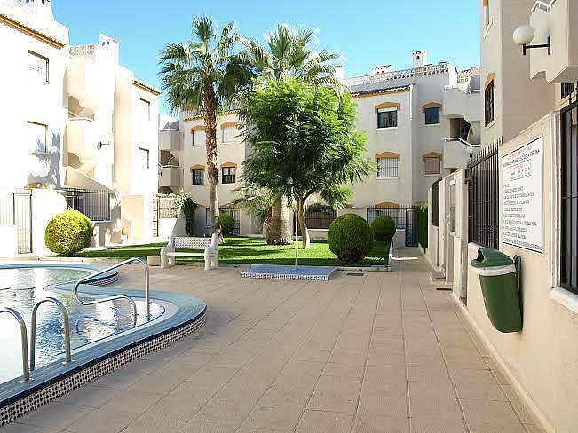 Foto2 - Apartamento en alquiler en Torrevieja - 322098980