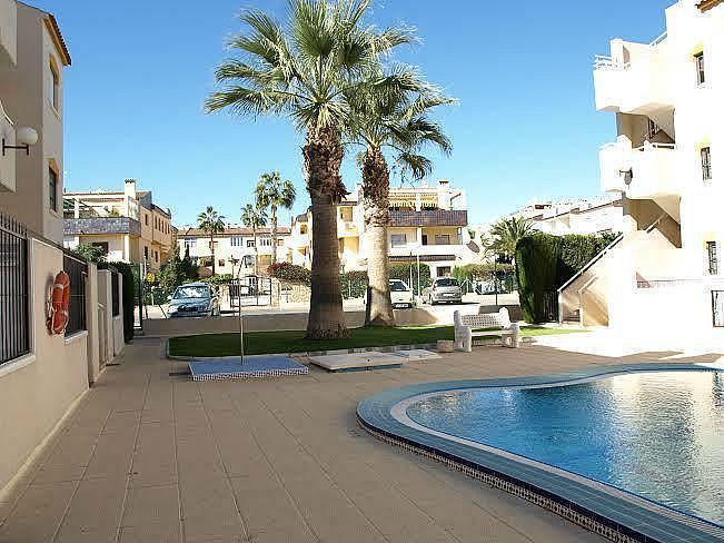 Foto3 - Apartamento en alquiler en Torrevieja - 322098983