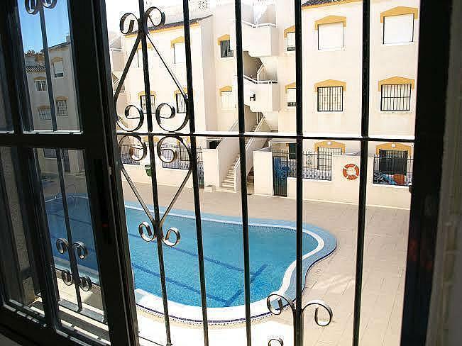 Foto4 - Apartamento en alquiler en Torrevieja - 322098986
