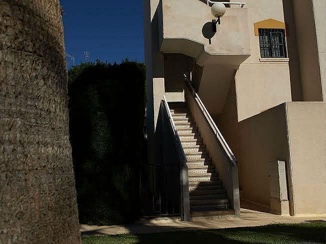 Foto12 - Apartamento en alquiler en Torrevieja - 322099010