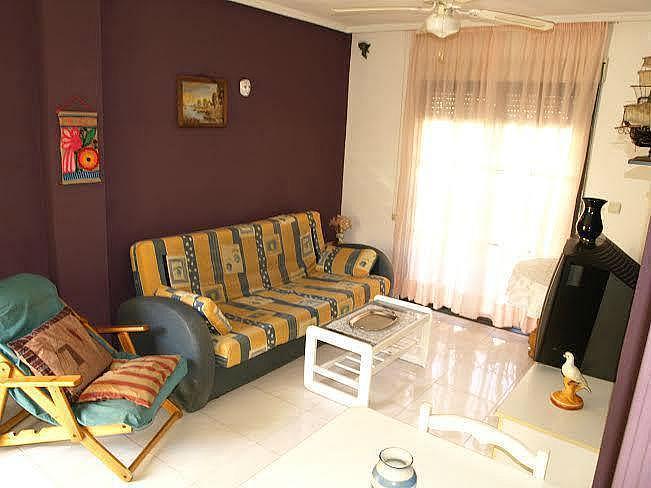 Foto13 - Apartamento en alquiler en Torrevieja - 322099013