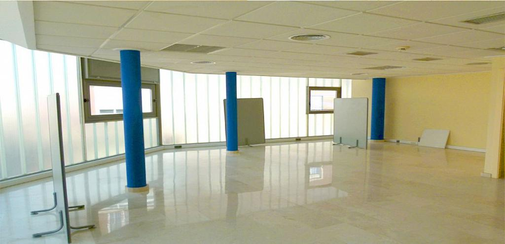 Oficina en alquiler en calle Vicente Blasco Ibáñez, Elche/Elx - 323920195