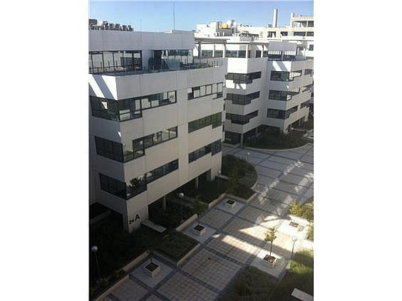 Oficina en alquiler en calle Casas de Miravete, Villa de vallecas en Madrid - 331331351