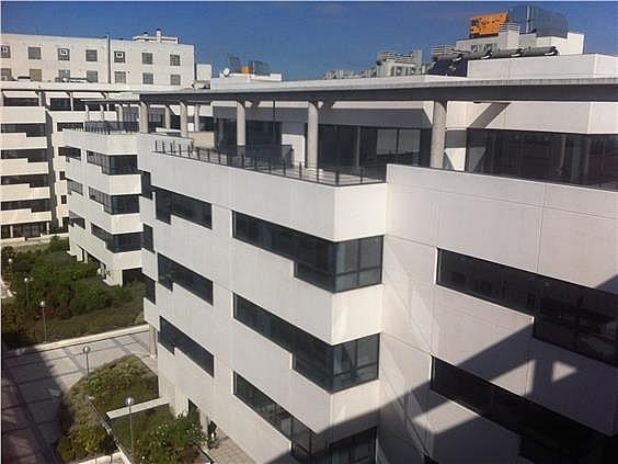 Oficina en alquiler en calle Casas de Miravete, Villa de vallecas en Madrid - 331331363