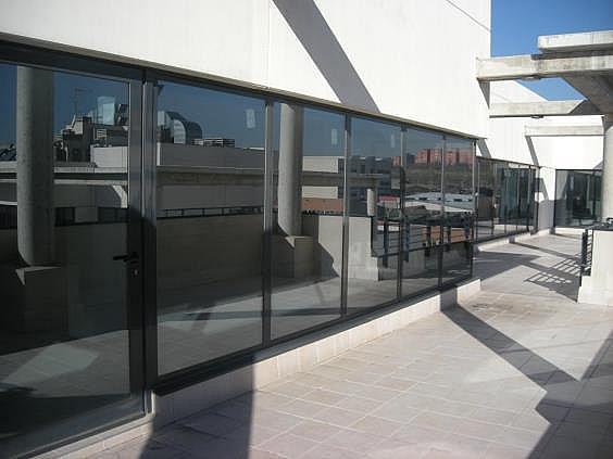 Oficina en alquiler en calle Casas de Miravete, Villa de vallecas en Madrid - 331331372