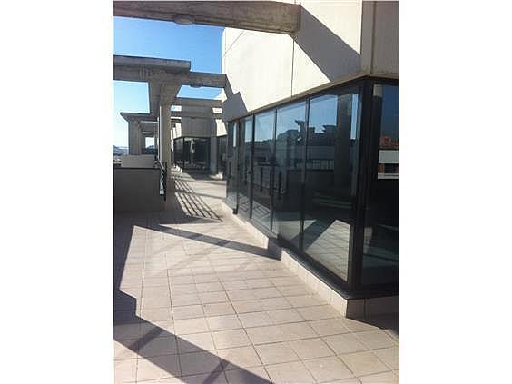 Oficina en alquiler en calle Casas de Miravete, Villa de vallecas en Madrid - 331331381
