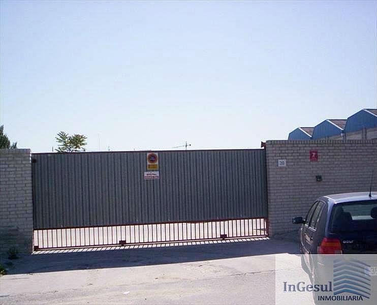 Foto3 - Nave industrial en alquiler en Madrid - 329179719