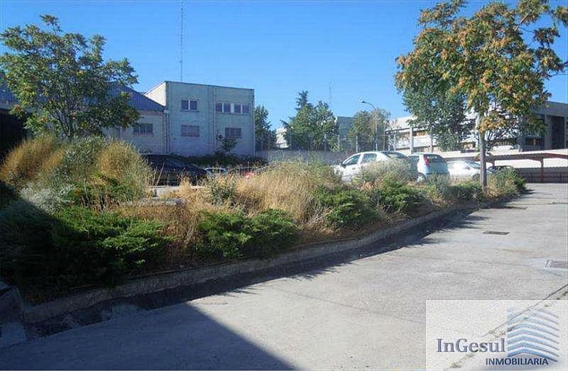 Foto4 - Nave industrial en alquiler en Madrid - 329179722
