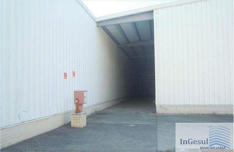 Foto7 - Nave industrial en alquiler en Madrid - 329179731