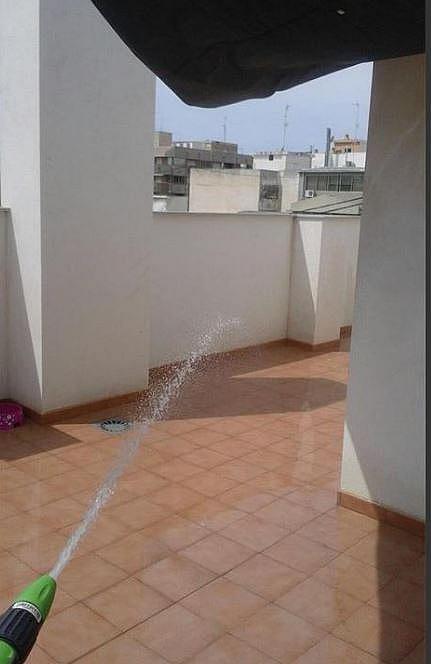Apartamento en alquiler en calle Carolinas, Carolinas Altas en Alicante/Alacant - 357213770
