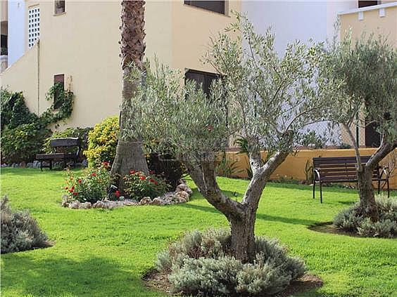 Apartamento en alquiler en calle Juan Pablo II, Ayamonte - 354703884