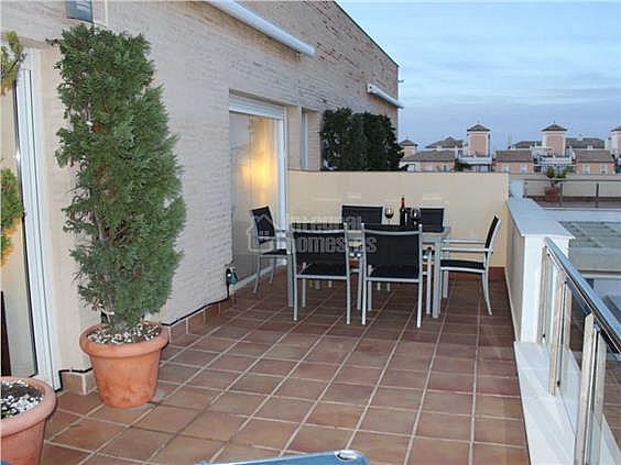 Apartamento en alquiler en calle De la Mojarra, Ayamonte - 354707961