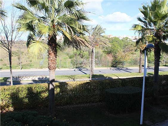Apartamento en alquiler en calle Juan Pablo II, Ayamonte - 354710127