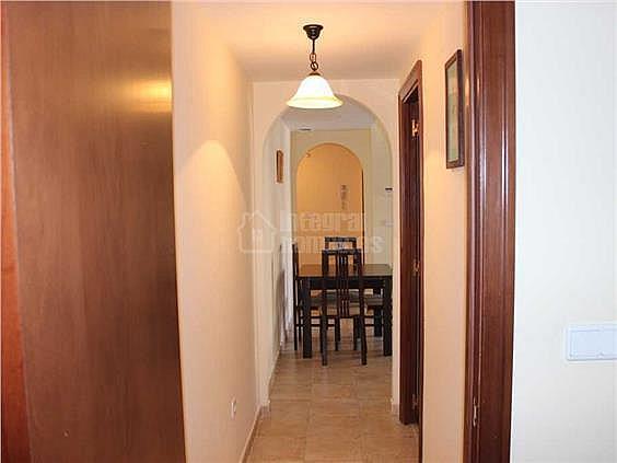 Apartamento en alquiler en calle Juan Pablo II, Ayamonte - 354710517