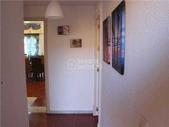 Apartamento en alquiler en calle De la Mojarra, Ayamonte - 354711375