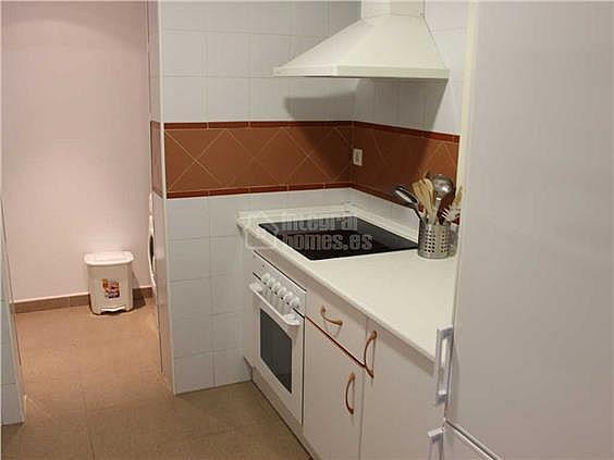 Apartamento en alquiler en calle De la Mojarra, Ayamonte - 354712689