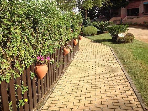 Apartamento en alquiler en calle De la Mojarra, Ayamonte - 354713643