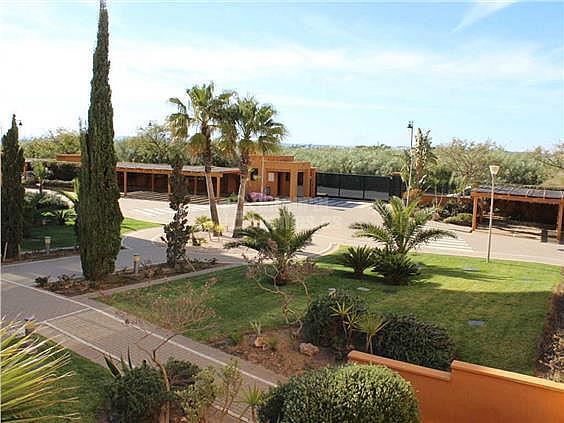 Apartamento en alquiler en calle De la Mojarra, Ayamonte - 355445071
