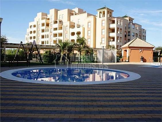 Apartamento en alquiler en calle Avenida de Las Codornices, Isla de Canela - 355445731