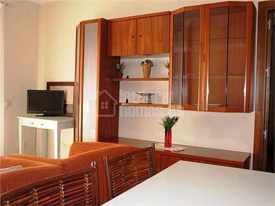Apartamento en alquiler en calle Avenida de Las Codornices, Isla de Canela - 355445749
