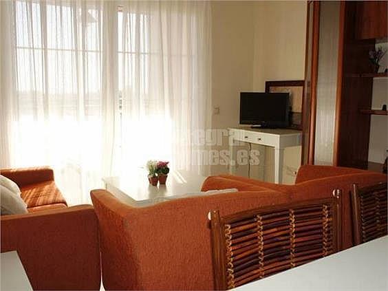 Apartamento en alquiler en calle Avenida de Las Codornices, Isla de Canela - 355445752