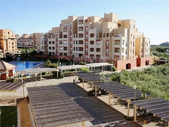 Apartamento en alquiler en calle Avenida de Las Codornices, Isla de Canela - 355445776