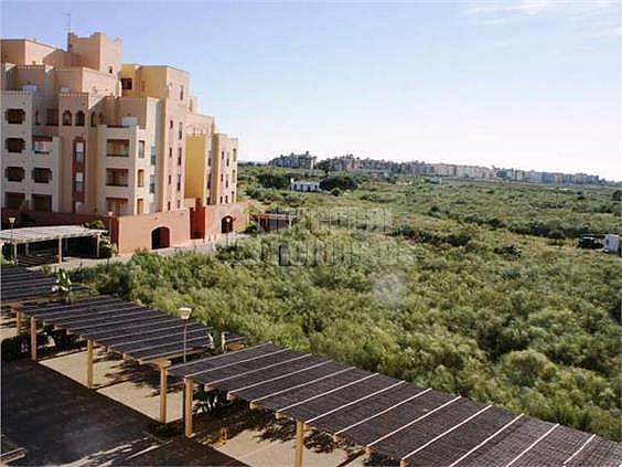 Apartamento en alquiler en calle Avenida de Las Codornices, Isla de Canela - 355445782
