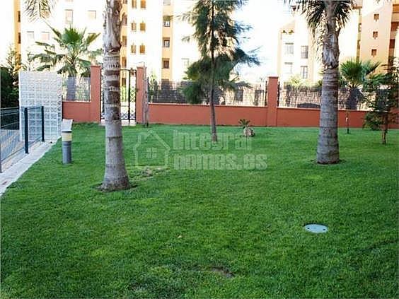 Apartamento en alquiler en calle Avenida de Las Codornices, Isla de Canela - 355445788