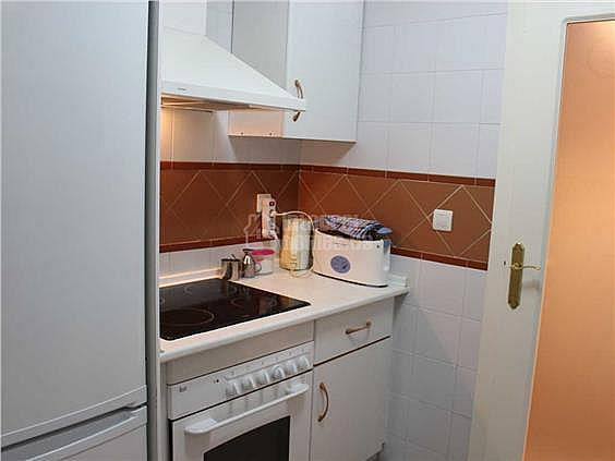 Apartamento en alquiler en calle De la Mojarra, Ayamonte - 355445824