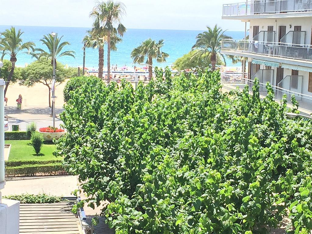 Apartamento en alquiler en calle Montroig de Cambrils Port, Regueral en Cambrils - 295402545