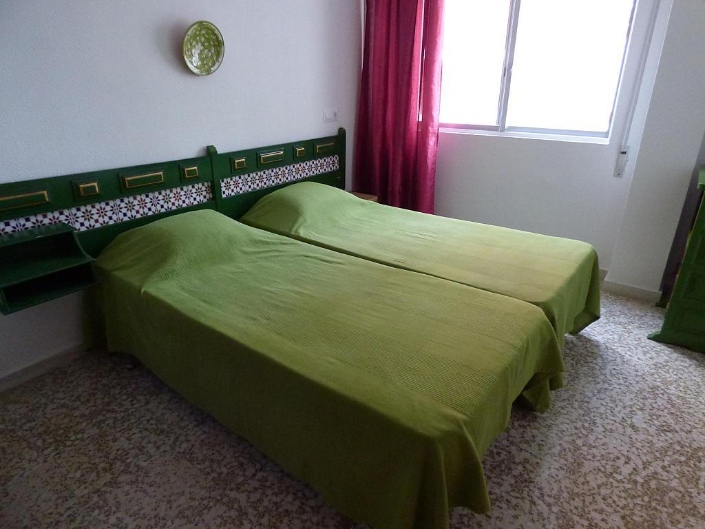 Piso en alquiler en paseo Maritimo de Poniente, Torre del mar - 263618822