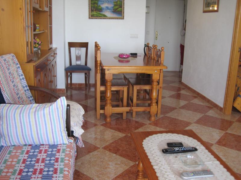 Salón - Piso en alquiler en calle Edf Antillas, Torre del mar - 116491642