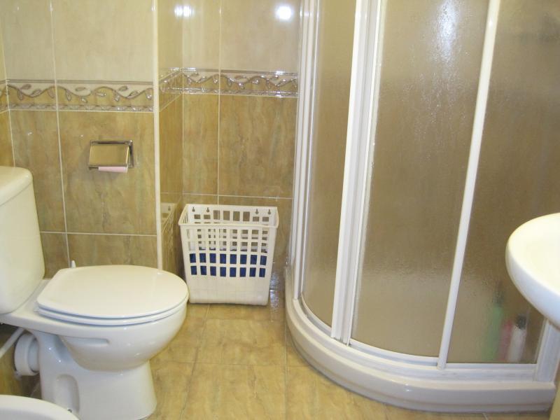 Baño - Piso en alquiler en calle Edf Antillas, Torre del mar - 116491729
