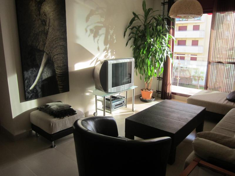 Salón - Piso en alquiler en calle Mar Cantabrico, Torre del mar - 116564907