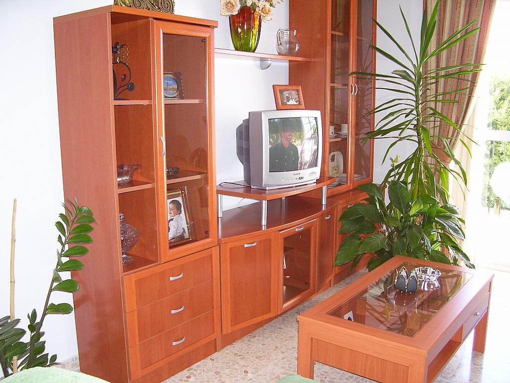Piso en alquiler en calle La Vega, Torre del mar - 129350592