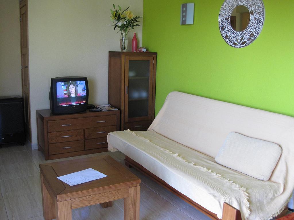 Piso en alquiler en calle Infantes, Torre del mar - 134338020