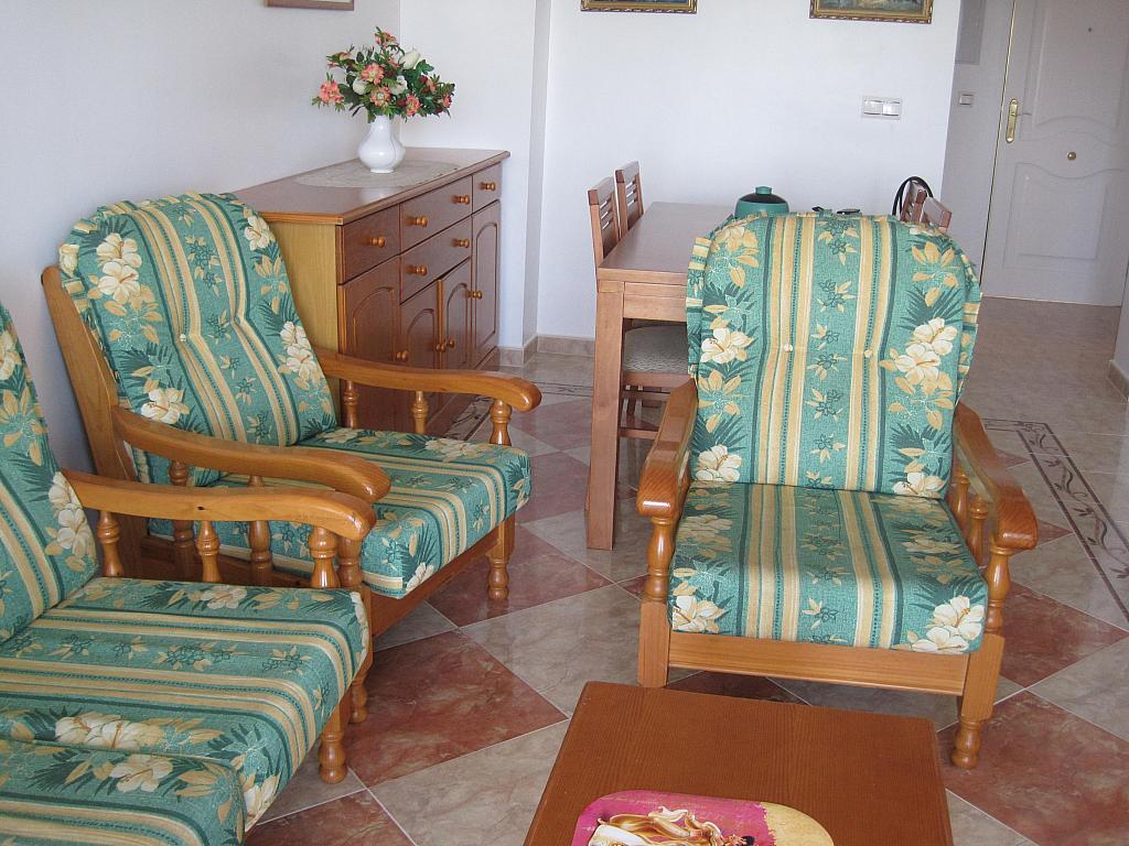 Salón - Piso en alquiler en paseo Maritimo de Levante, Torre del mar - 169618842