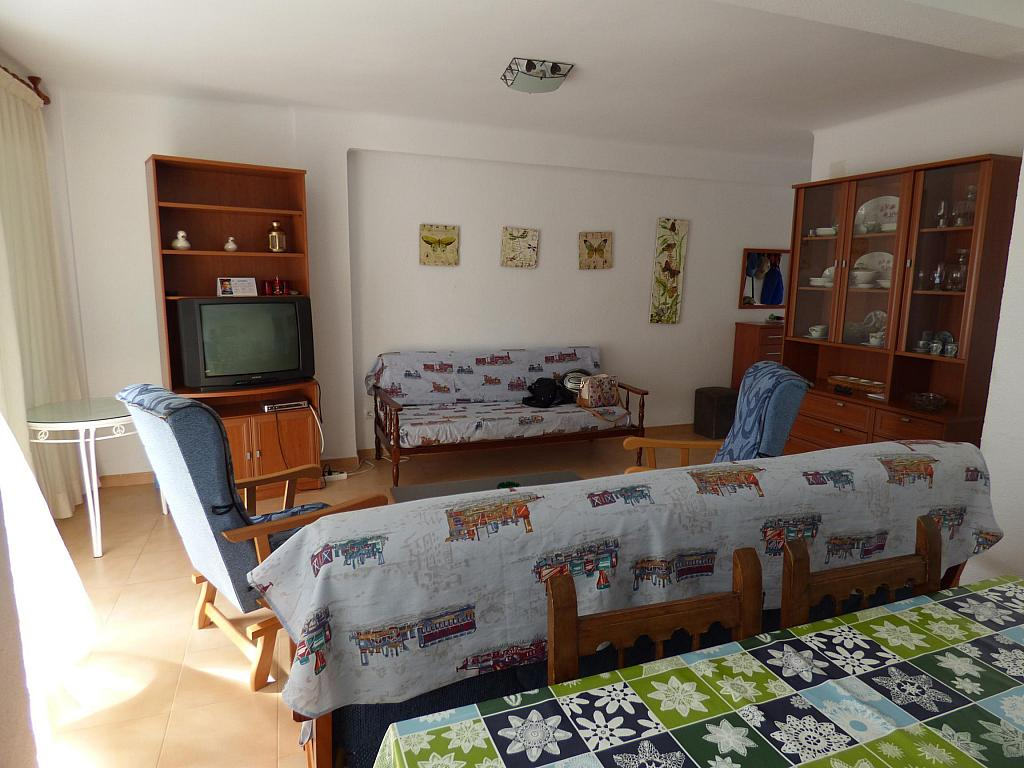 Piso en alquiler en paseo Marítimo de Poniente, Torre del mar - 217408004