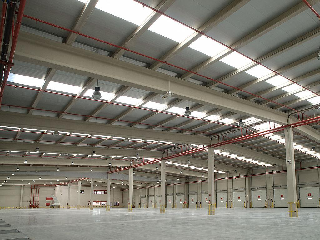 Vistas - Nave industrial en alquiler en calle De Los Artesanos, San Fernando de Henares - 252368613