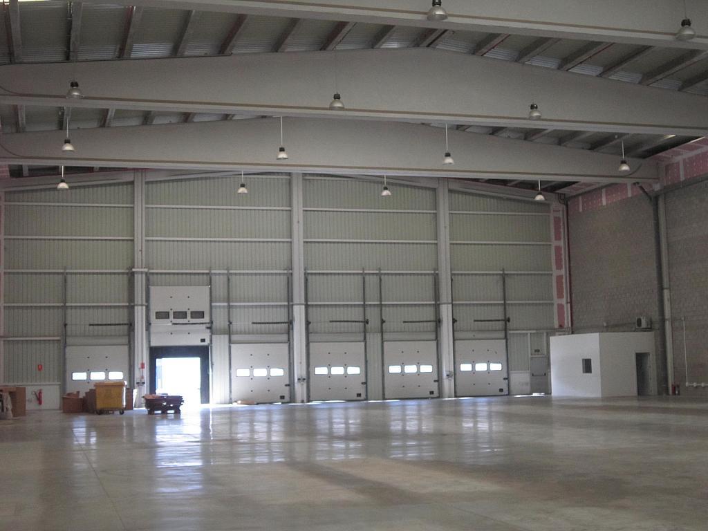 Vistas - Nave industrial en alquiler en calle Central, Aeropuerto en Madrid - 224228947