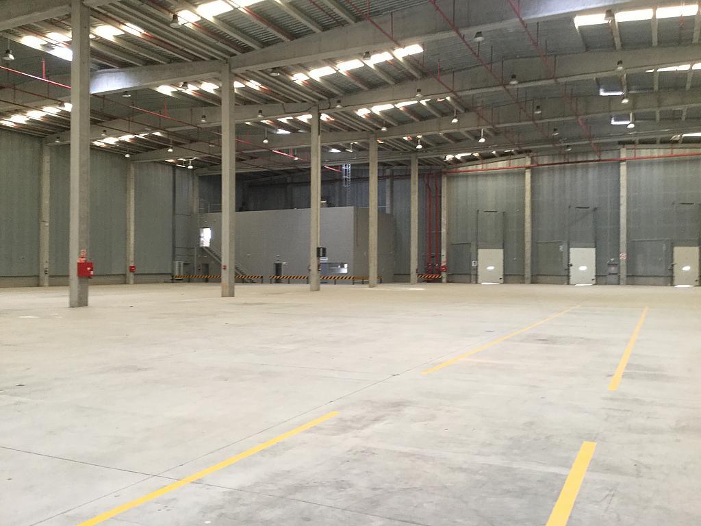 Vistas - Nave industrial en alquiler en calle De Alovera, Cabanillas del Campo - 290306206
