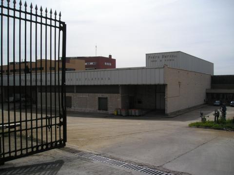 Fachada - Nave industrial en alquiler en calle De Hormigueras, Ensanche de Vallecas en Madrid - 24064164