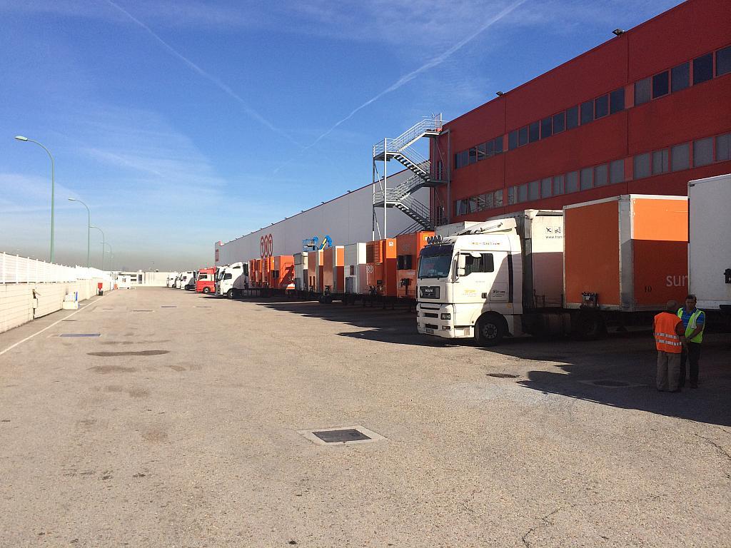 Detalles - Nave industrial en alquiler en calle De la Tenacidad, Getafe Norte en Getafe - 224258088
