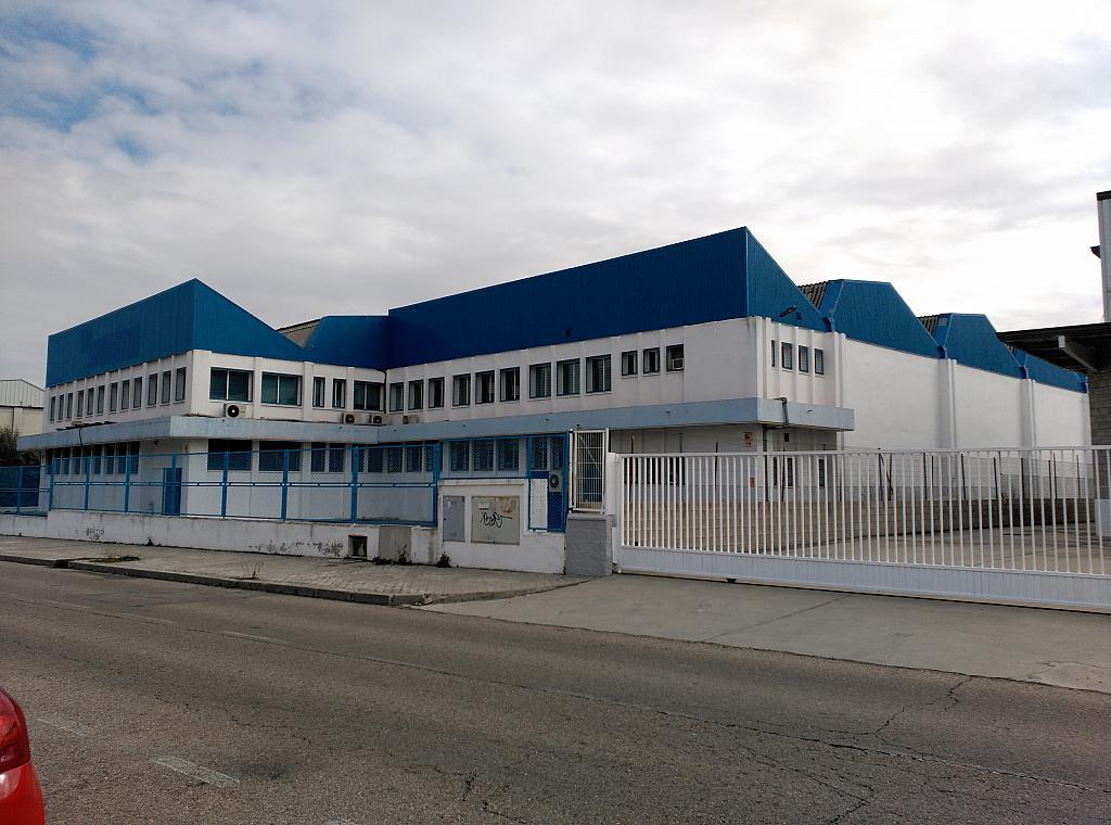 Nave industrial en alquiler en calle De la Industria, Barrio de la Estacion en Coslada - 171567176