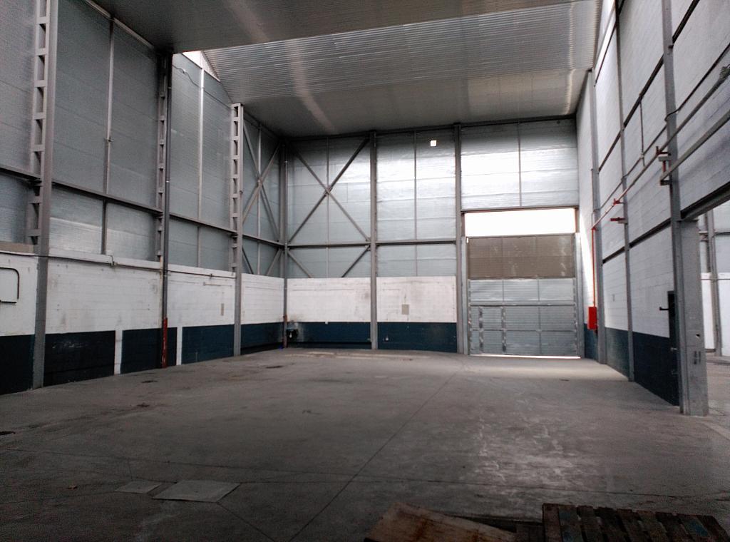 Nave industrial en alquiler en calle Labradores, Prado del Espino en Boadilla del Monte - 171792058