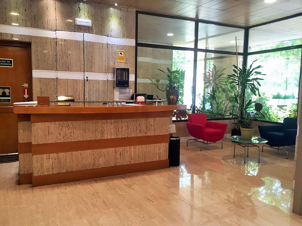 Oficina en alquiler en calle De Caleruega, Costillares en Madrid - 341276996